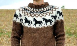 Pullover Hestar