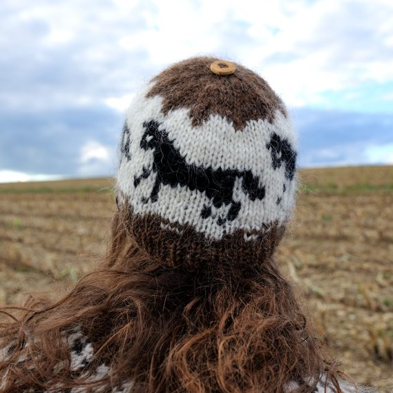 Mütze Hestar - Fjallagrös - Plötulopi