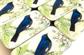 Firefly Notes - Bird