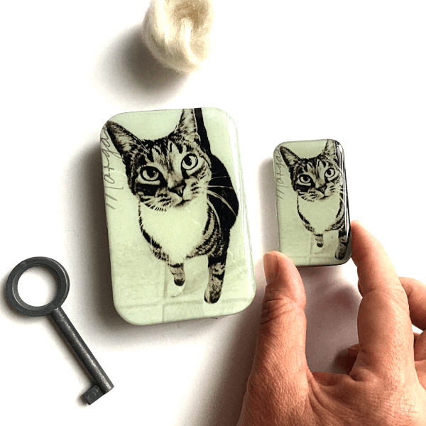 Firefly Notes - Cat